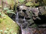 waterfall at the bridge