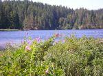 Mine Lake