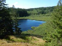 Lake at Vic's Marsh