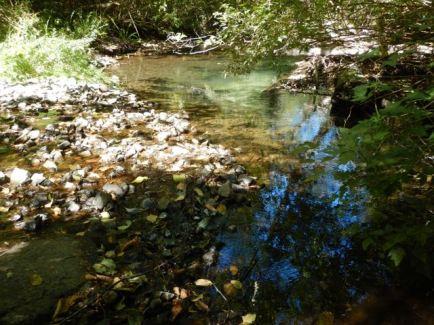 Back at Stramberg Creek