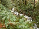 Hyacinthe Creek