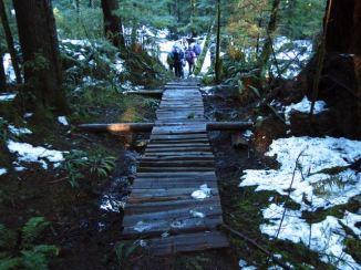 Bottom of Crikey Creek trail