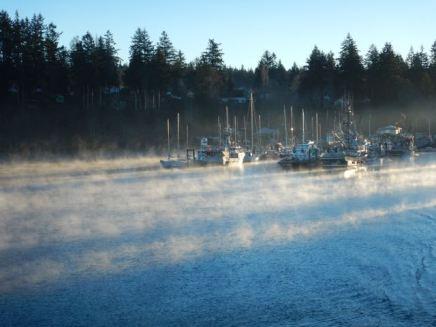 """Sea smoke"" at Q Cove"