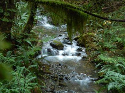 Little Morte Creek