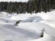 Snow sculpted by creek