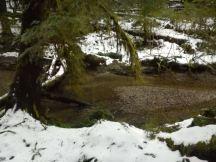 Open Bay Creek